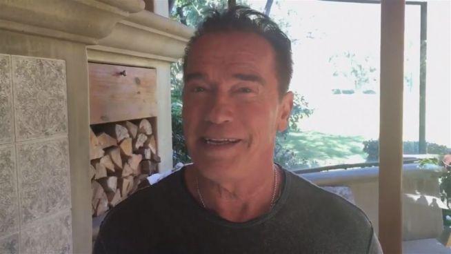 Trump vs Terminator: Schwarzenegger will Präsidentenjob